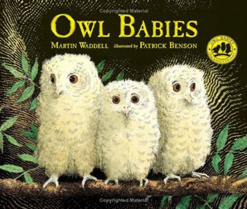Picture of Owl Babies - board book
