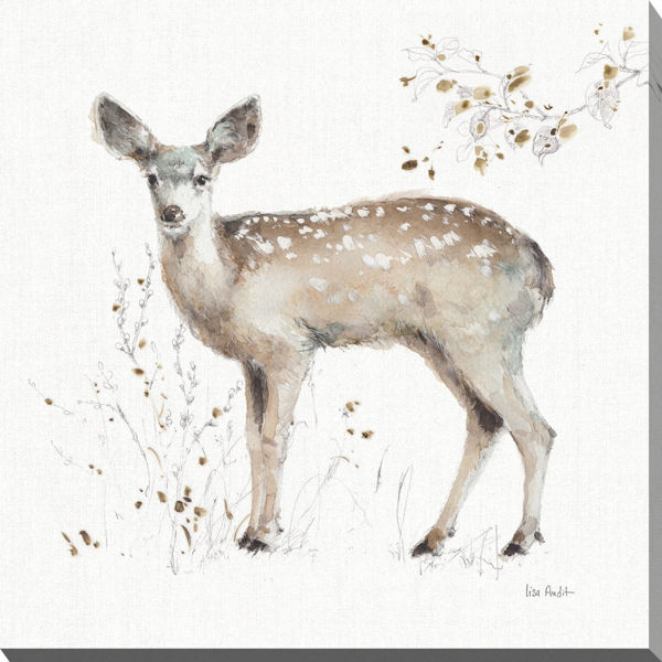 Picture of Doe Walk 24 X 24