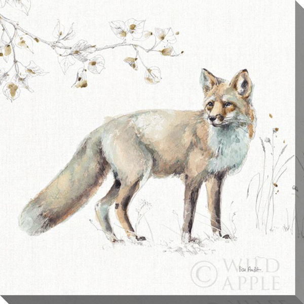 Picture of Woodland Fox 16 X 16